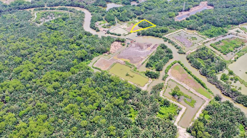 1350m2 đất trồng cây lâu năm - Phước Kiển - Nhà Bè
